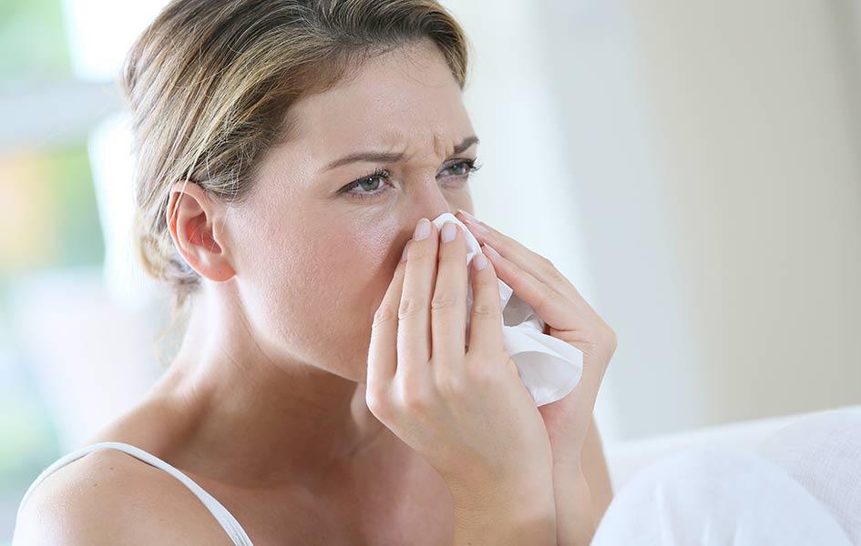 Kork für Allergiker | HolzLand Stoellger in Langenhagen
