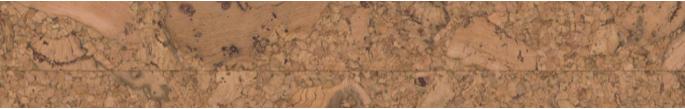 Korkboden Amorim WISE: Format | HolzLand Stoellger bei Hannover